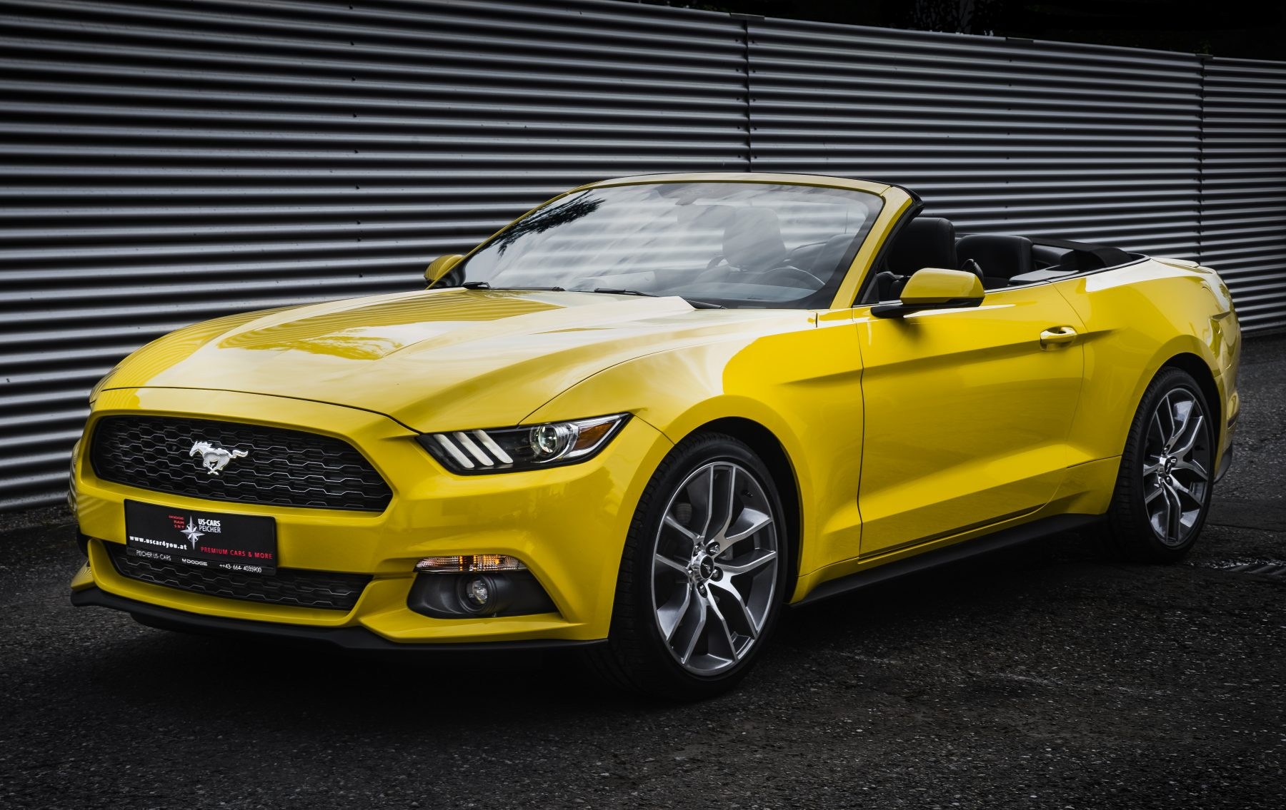 ford mustang 2 3 ecoboost convertible peicher automotive. Black Bedroom Furniture Sets. Home Design Ideas